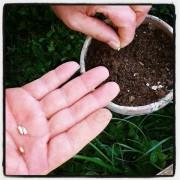 Coltivare la terra per coltivare se stessi